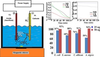 Electrochemical synthesized copper oxide nanoparticles for
