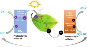 Recent advances in photoinduced catalysis for water
