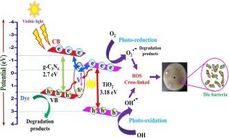 Fabrication of heterostructured vanadium modified g-C3N4