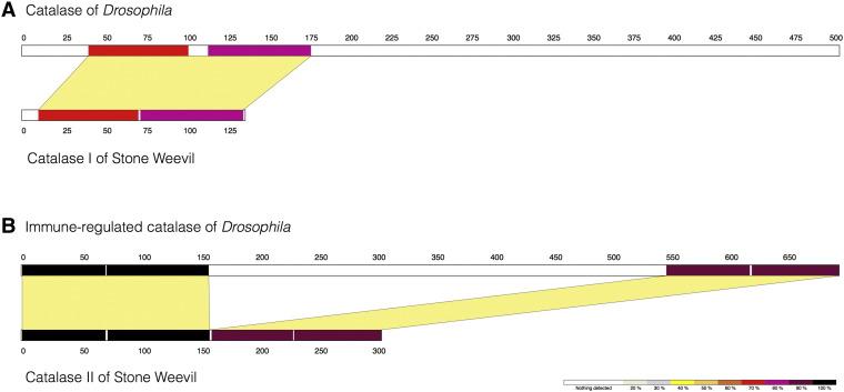 catalase temperature range