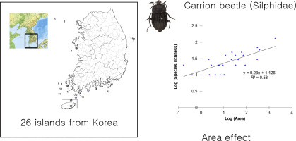 Area Effect Of Distribution Of Silphids Coleoptera Silphidae On