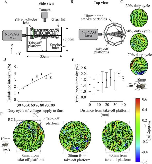 Dynamics of body kinematics of freely flying houseflies