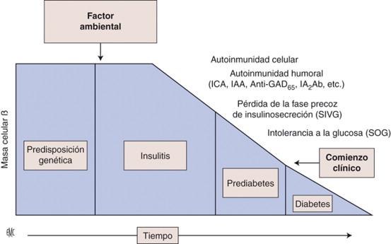 azúcar en la sangre fluctuante en gastroparesia sin diabetes