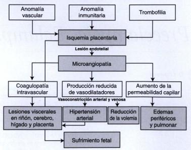 La causa de la hipertensión esencial es la pielonefritis peligrosa