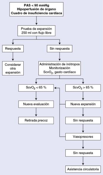 tratamiento de shock cardiogenico pdf