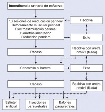 incontinencia urinaria tipos y grados