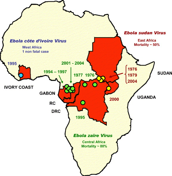 ebola virus outbreaks in africa past and present pdf