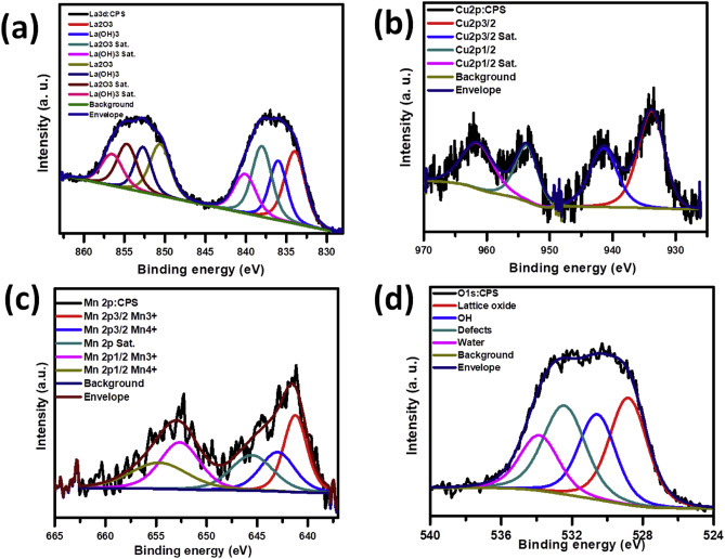 Hydrothermal synthesis and electrochemical performance of