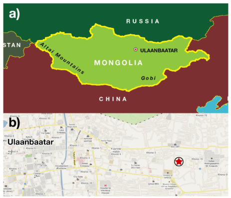 Air particulate matter pollution in Ulaanbaatar Mongolia