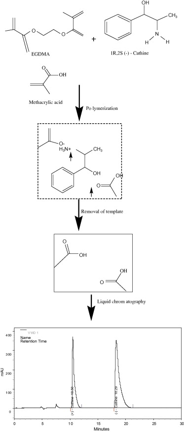 Preparation and evaluation of molecularly imprinted polymer liquid ...