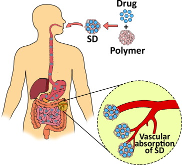 anthelmintic drug discovery into the future