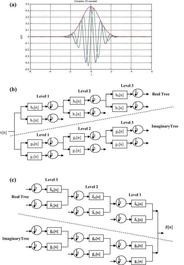 Medical image denoising using dual tree complex thresholding