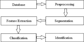 Fruits and vegetables quality evaluation using computer vision: A