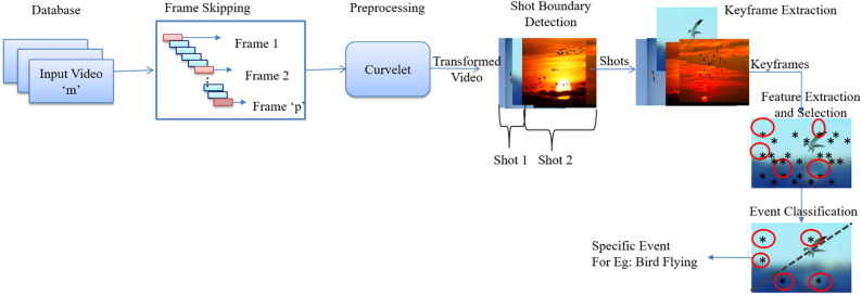 Curvelet transform based feature extraction and selection