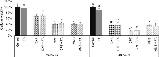 Effects of folic acid on the antiproliferative efficiency of