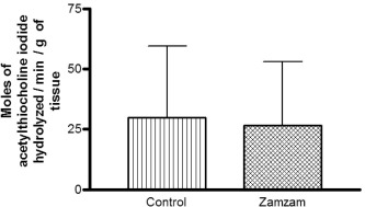 Effects of perinatal exposure to Zamzam water on the