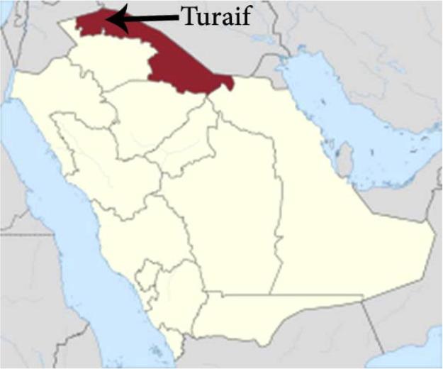 Survey of the reptilian fauna of the Kingdom of Saudi Arabia. V. The ...