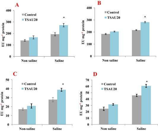 Impact of soil salinity on the plant-growth – promoting and