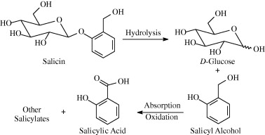 acetylsalicylic acid synthesis mechanism