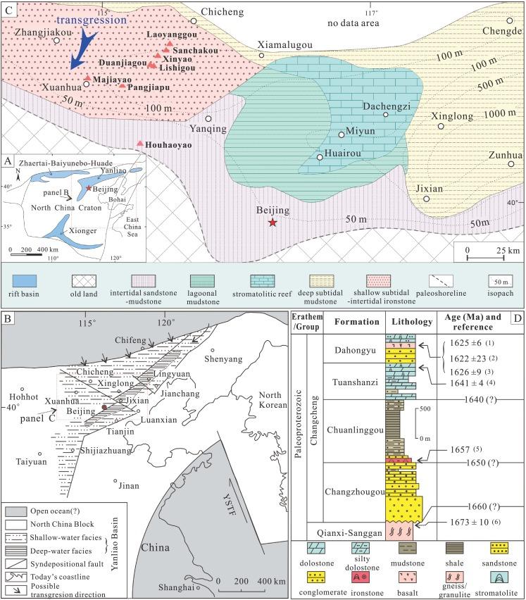 Shallow-marine ironstones formed by microaerophilic iron-oxidizing