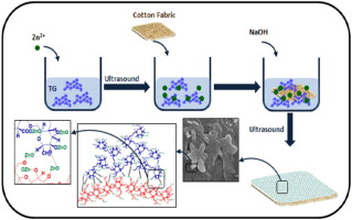 Ultrasound irradiation based in-situ synthesis of star-like
