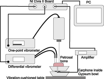 A method for characterizing stapes prostheses by their