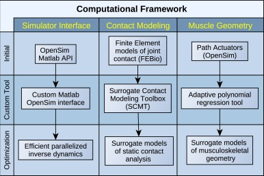 A computational framework for simultaneous estimation of muscle and