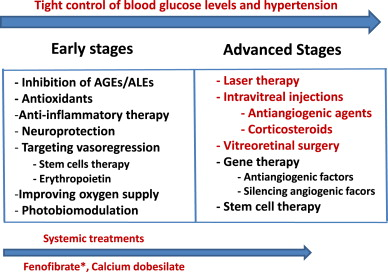 Novel approaches for treating diabetic retinopathy based on