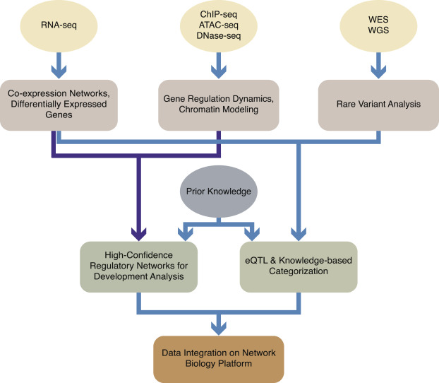 Next generation sequencing technology and genomewide data analysis