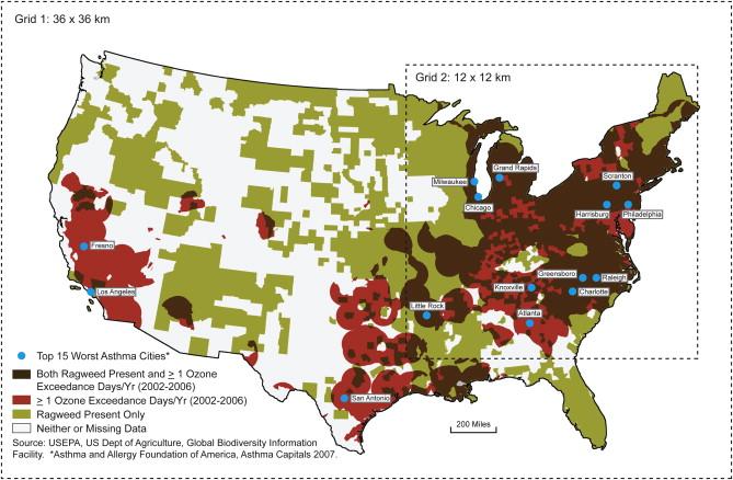 AANMA Maps The Status Of State Epinephrine Legislation Allergies