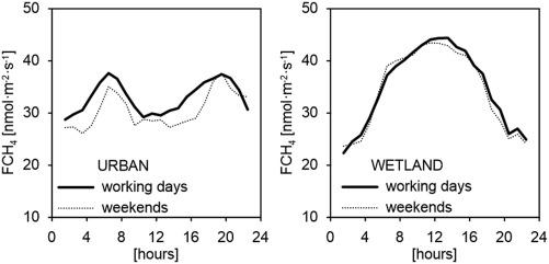 Urban – Wetland contrast in turbulent exchange of methane