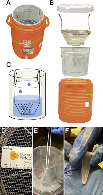 Microbial diversity of individual raindrops collected from