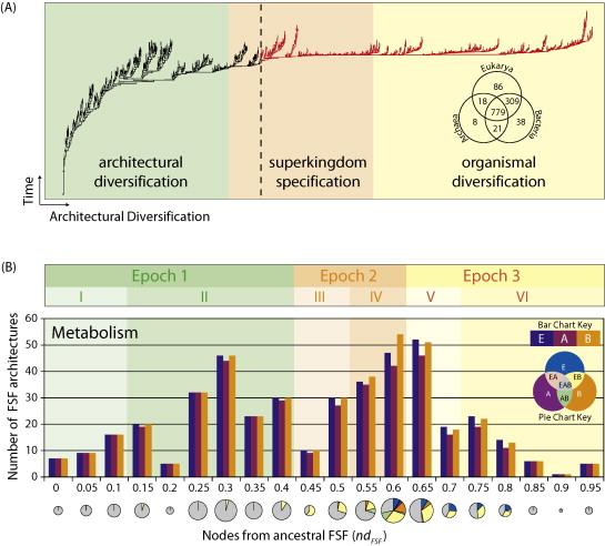 The origin and evolution of modern metabolism - ScienceDirect