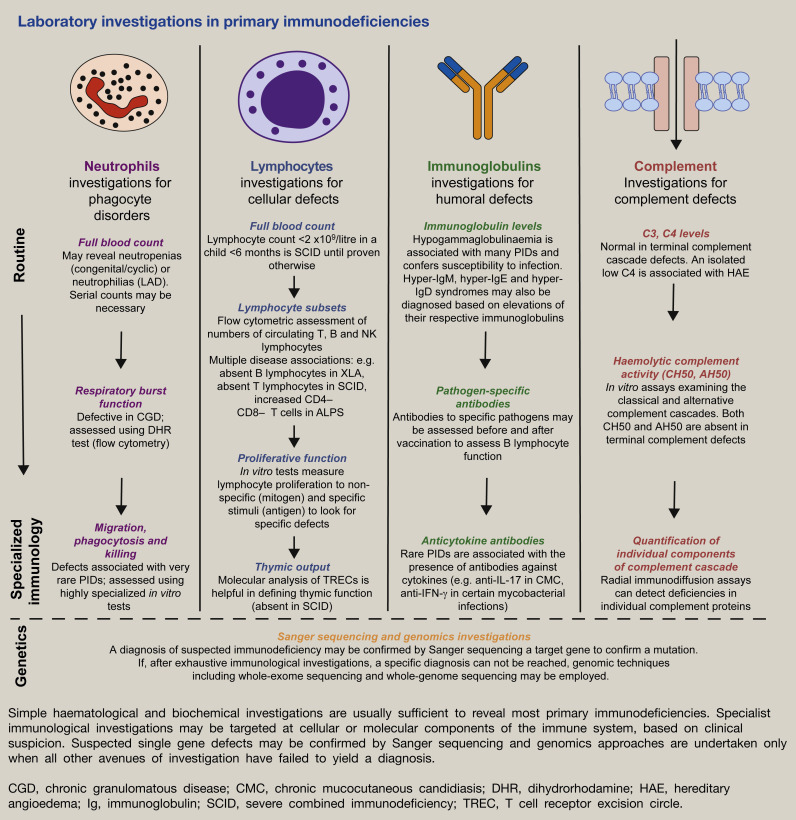 The primary immunodeficiency disorders - ScienceDirect