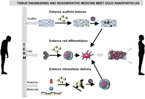 Recent advances using gold nanoparticles as a promising multimodal