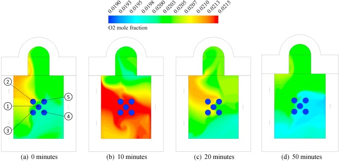 CFD-model to predict the local and time-dependent scale formation of