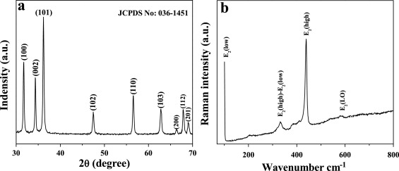 Antibiofilm activity of zinc oxide nanosheets (ZnO NSs) using