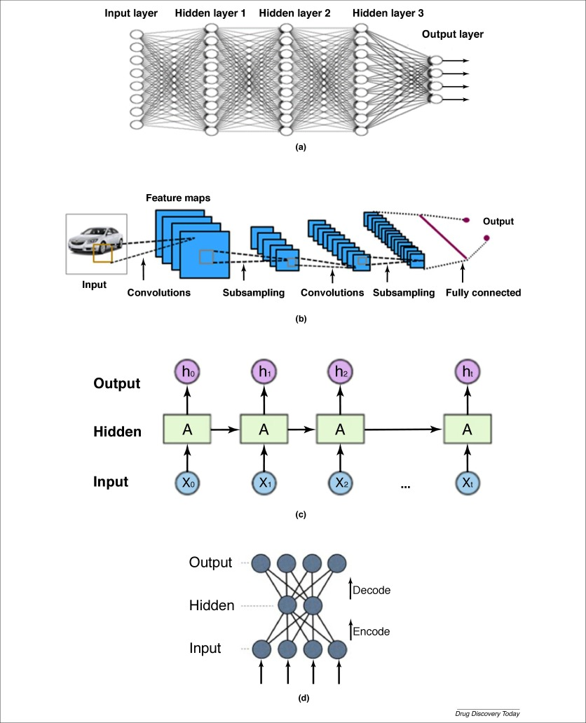 Review Informatics The rise of deep learning in drug discovery