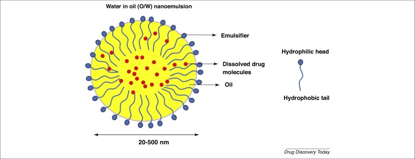 Nanoemulsions in CNS drug delivery: recent developments, impacts and  challenges - ScienceDirect