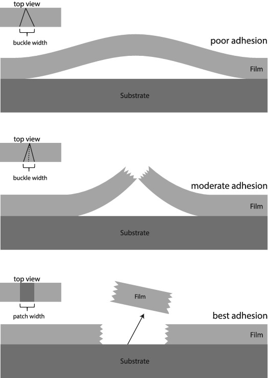Cohesive and adhesive failure of hard and brittle films on ductile ...