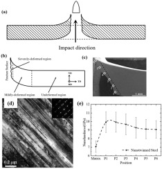 Microstructural evolution of a nanotwinned steel under extremely