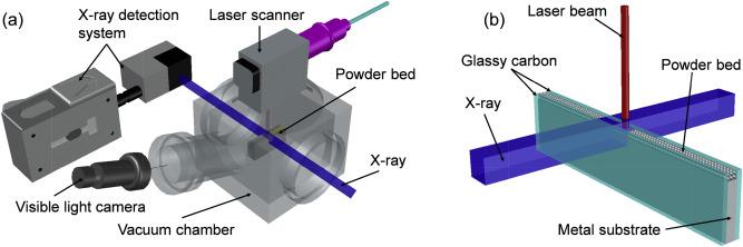 Transient dynamics of powder spattering in laser powder bed ... on