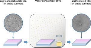 Pressureless sintering of ZnO thin film on plastic substrate via