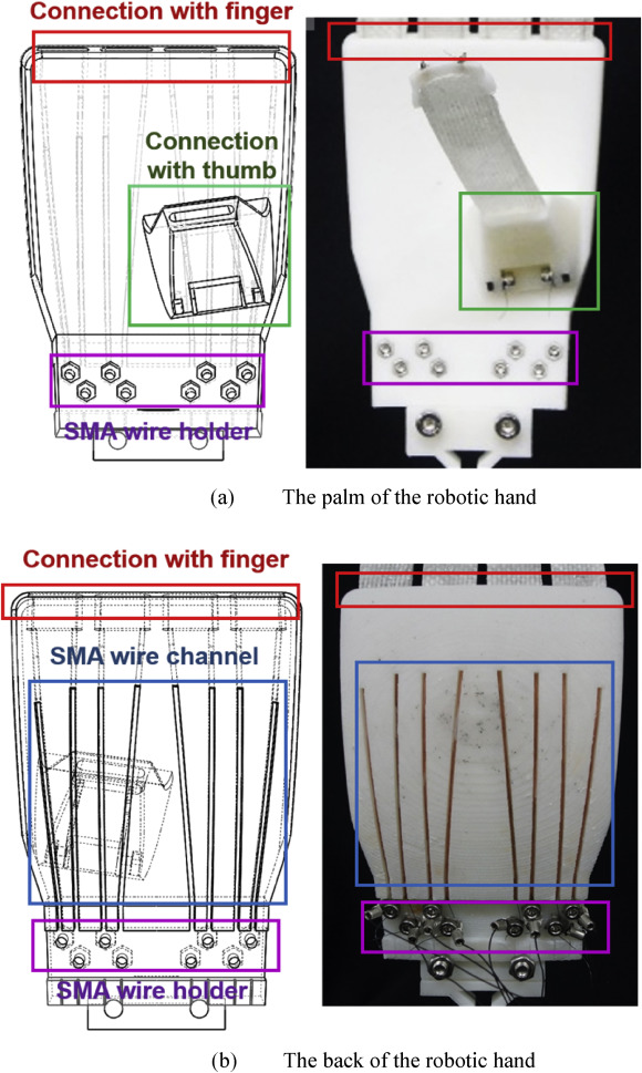 Soft morphing hand driven by SMA tendon wire - ScienceDirect