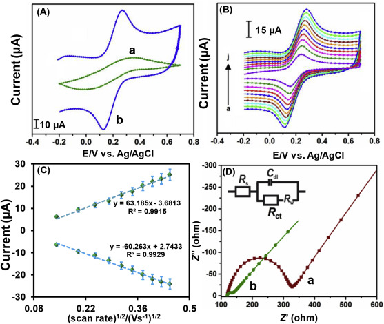 Sonochemical synthesis of graphene oxide sheets supported