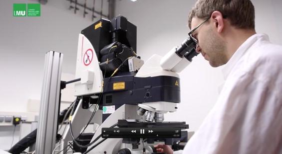 Molecular principles of membrane microdomain targeting in