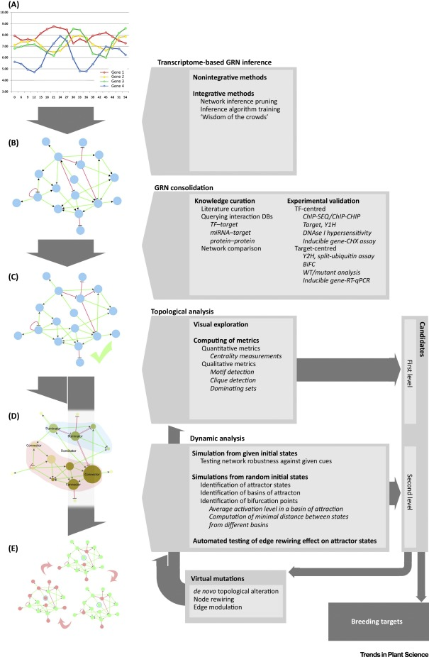 The Spring of Systems Biology-Driven Breeding - ScienceDirect