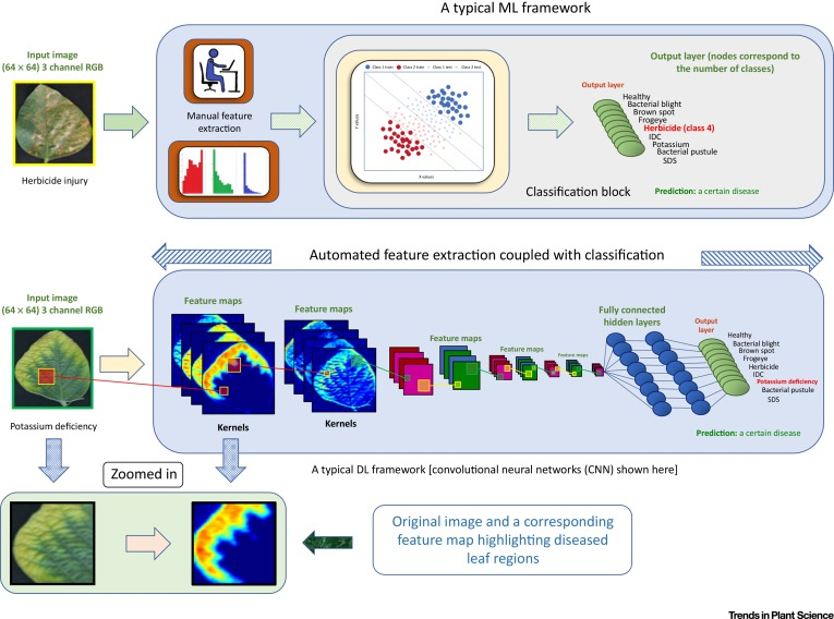 Deep Learning for Plant Stress Phenotyping: Trends and
