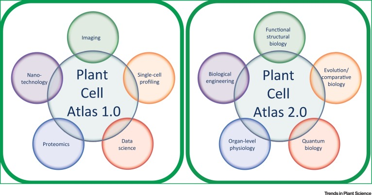Towards Building a Plant Cell Atlas - ScienceDirect