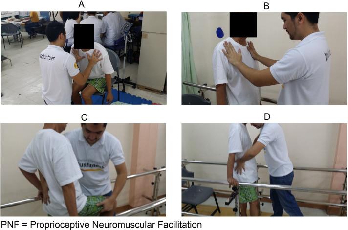 effectiveness of pnf in stroke